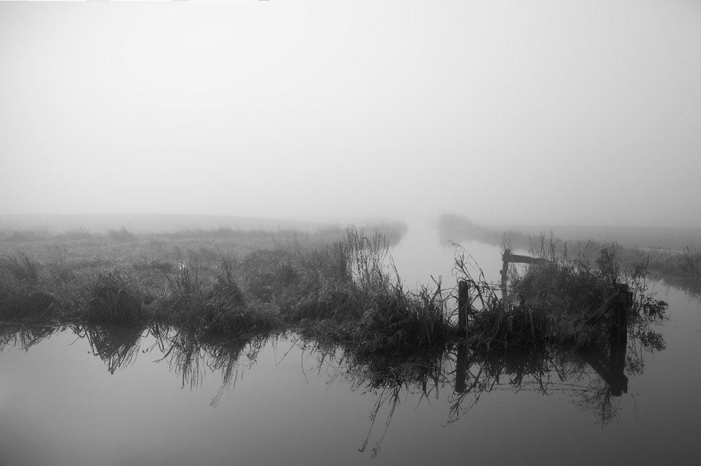 nebel-5.jpg